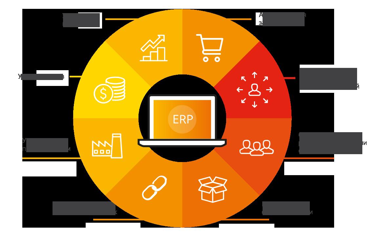за что отвечает система ERP